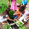Sustainable Living Academy - Education Program - Youth - Charity - Non-Profit