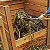 Sustainable Living Academy - Food Production - Composting - Charity - Non-Profit
