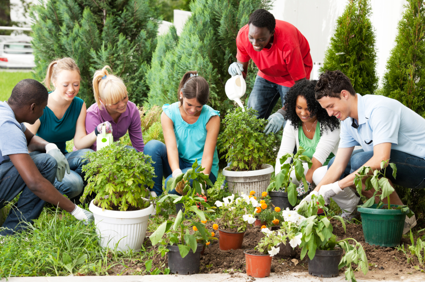 Sustainable Living Academy - Boot Camp Program - Charity - Non-Profit