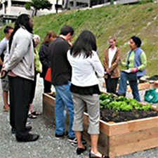 Sustainable Living Academy - Sustainable Training Center Program - Charity - Non-Profit